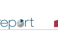 report-istat-header